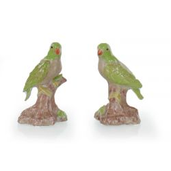 Pair of green parrots